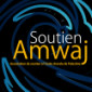Amwaj is a member of the MEDINEA network